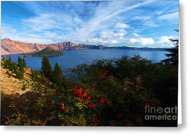 Craters Greeting Cards - Berries On The Crater Greeting Card by Adam Jewell