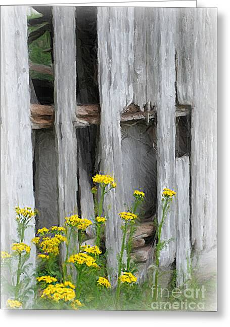 Old Barns Greeting Cards - Beside the Barn Greeting Card by Lila Fisher-Wenzel