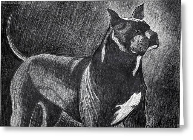 Show Dog Greeting Cards - Best in Show Greeting Card by Bob Crawford