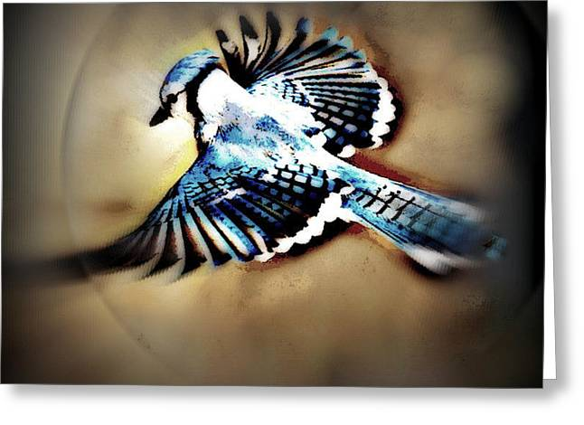 Yomamabird Rhonda Greeting Cards - Betty Bluejay Greeting Card by YoMamaBird Rhonda