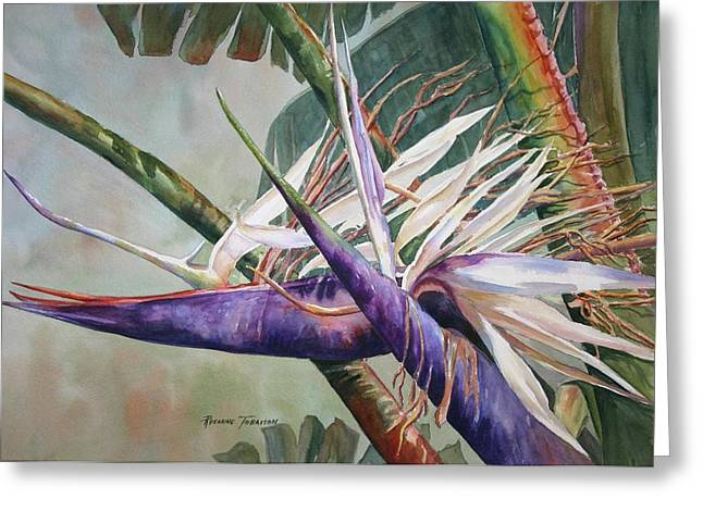 Strelitzia Paintings Greeting Cards - Bettys Bird - Bird of Paradise Greeting Card by Roxanne Tobaison