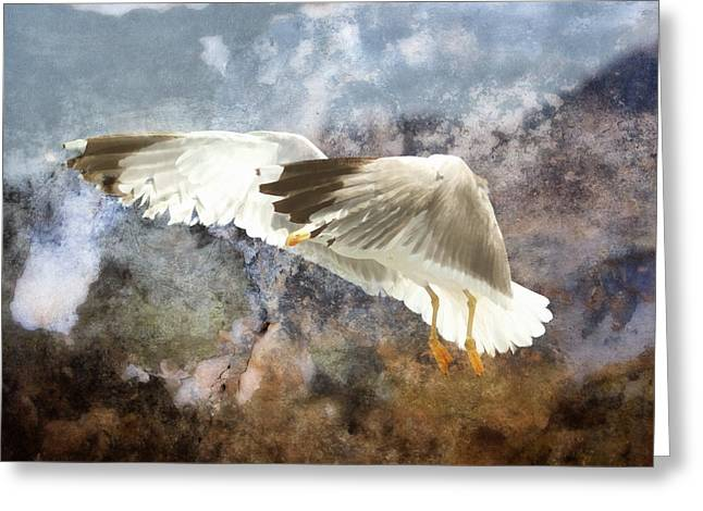 Flying Bird Mixed Media Greeting Cards - Between Heaven And Earth Greeting Card by Georgiana Romanovna