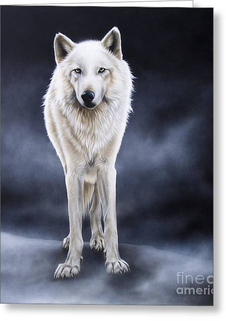 Wolf Song Studio Greeting Cards - Between the White and the Black Greeting Card by Sandi Baker