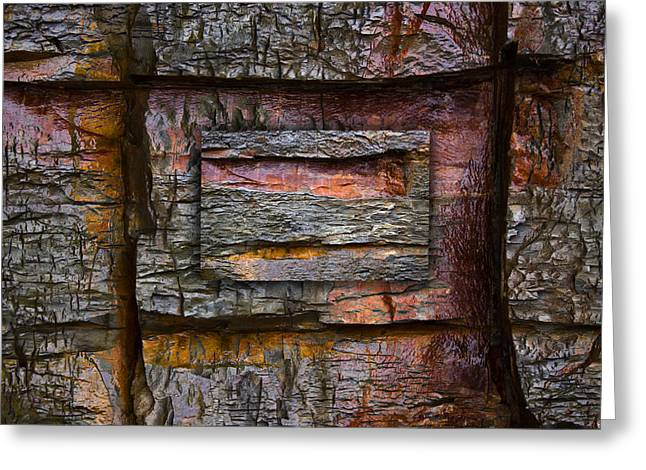Rectangles Greeting Cards - Between Tides Number 7 Greeting Card by Carol Leigh