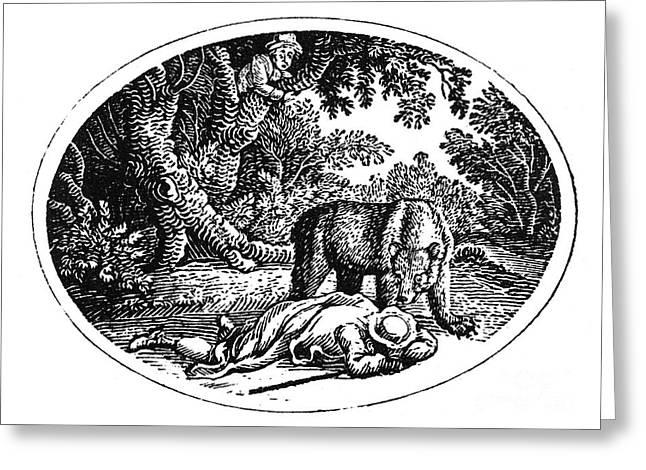 Bewick Greeting Cards - Bewick: Man And Bear Greeting Card by Granger