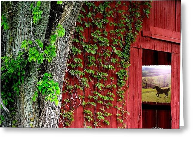 Barn Digital Greeting Cards - Beyond Greeting Card by Bill Stephens