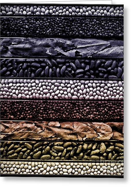 The Bean Greeting Cards - Beyond the bean seed Greeting Card by Danuta Bennett