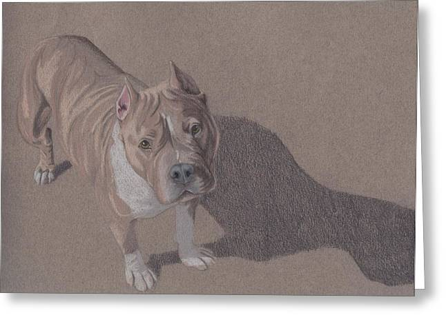Bully Greeting Cards - Bezel Greeting Card by Stacey Jasmin