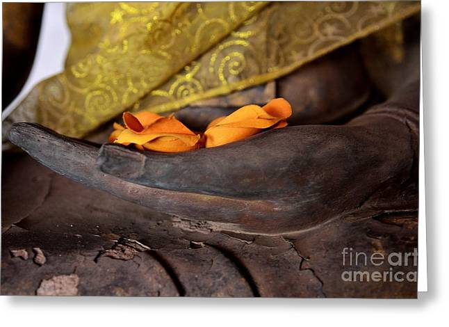 Ohms Greeting Cards - Bhumisparsa Mudra II in Colour Greeting Card by Dean Harte