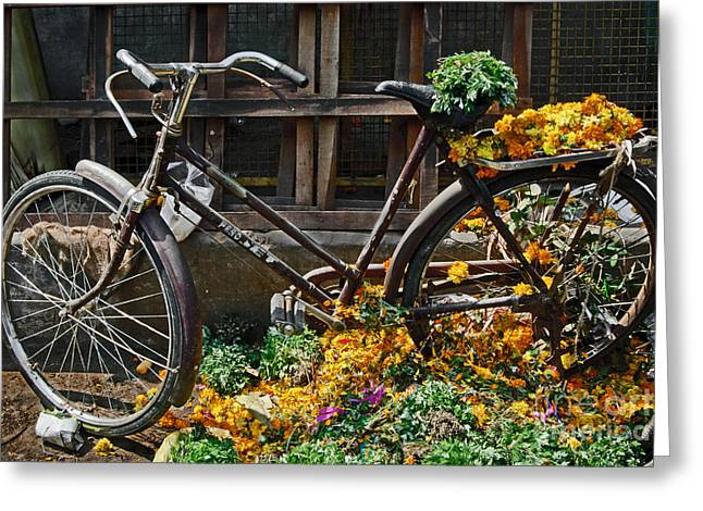 Pushbike Greeting Cards - Bicycle Greeting Card by Dev Gogoi