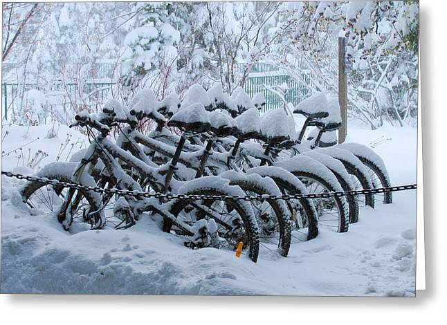 Black Lodge Photographs Greeting Cards - Bicycles In The Snow Greeting Card by Heidi Smith