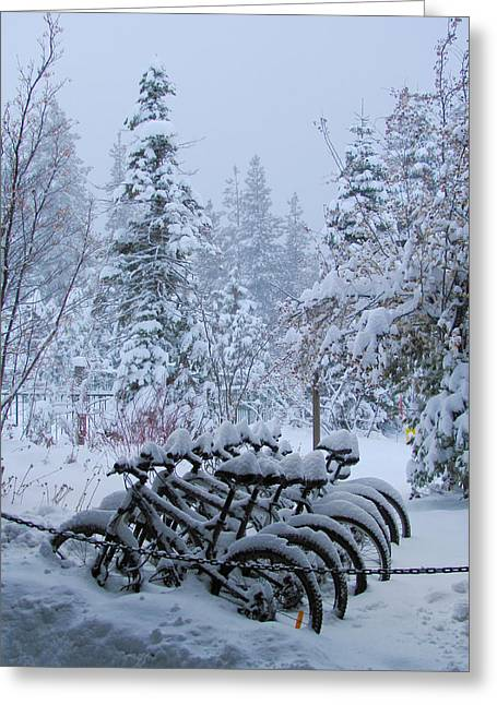 Black Lodge Photographs Greeting Cards - Bicycles In The Snow II Greeting Card by Heidi Smith