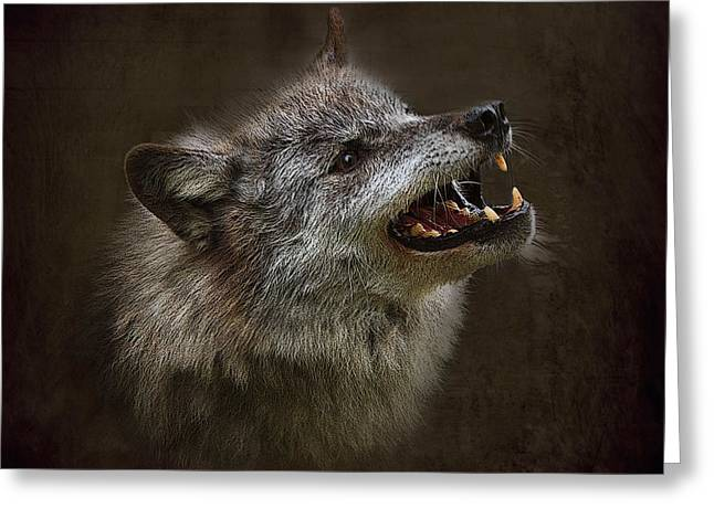 Growling Greeting Cards - Big Bad Wolf Greeting Card by Louise Heusinkveld