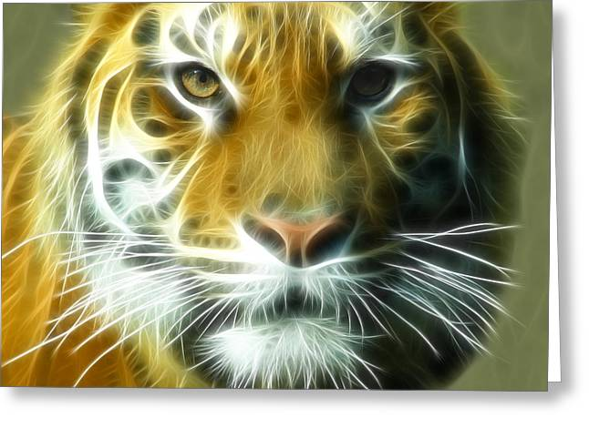 Wildcats Greeting Cards - Big Cat Big Stripes Greeting Card by Tilly Williams