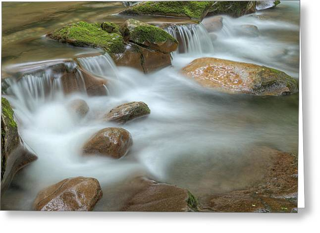 Beautiful Creek Greeting Cards - Big Creek Smoky Mountains Greeting Card by Dean Pennala