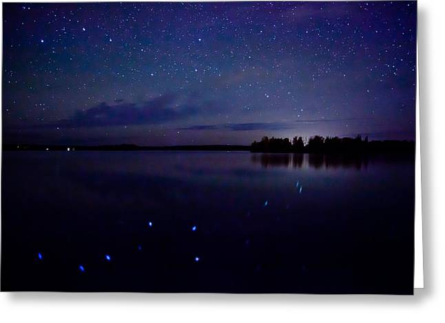 Birch Lake Greeting Cards - Big Dipper Reflection Greeting Card by Adam Pender