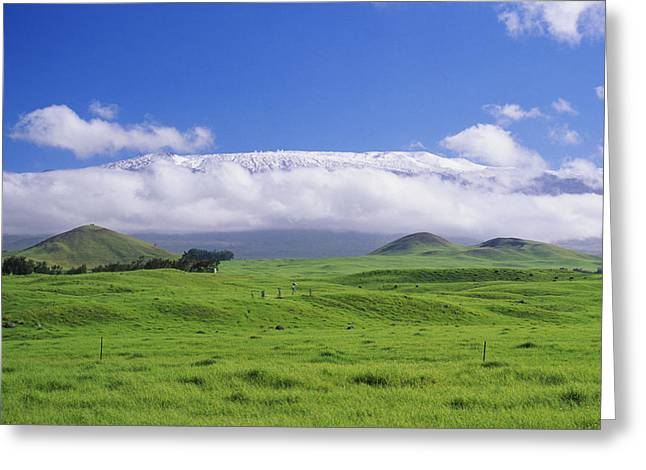 Waimea Valley Greeting Cards - Big Island, Waimea Greeting Card by Peter French - Printscapes