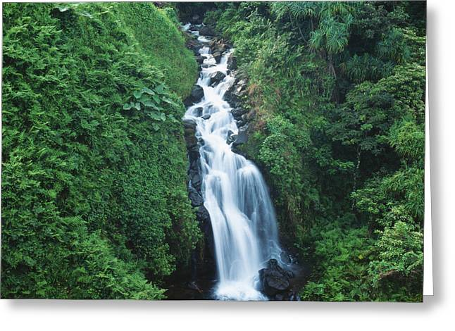 Hamakua Greeting Cards - Big Island Watefall Greeting Card by William Waterfall - Printscapes