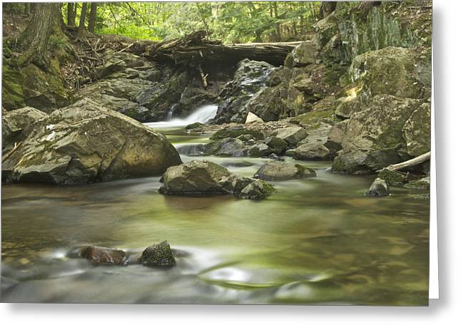 Yellow Dog River Greeting Cards - Big Pup Falls 5 Greeting Card by Michael Peychich