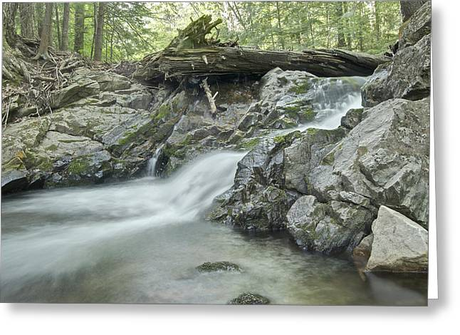 Yellow Dog River Greeting Cards - Big Pup Falls Greeting Card by Michael Peychich