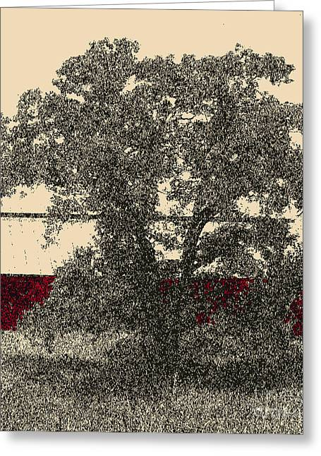 Barn Pen And Ink Greeting Cards - Big Red in Black Greeting Card by Gail Salituri