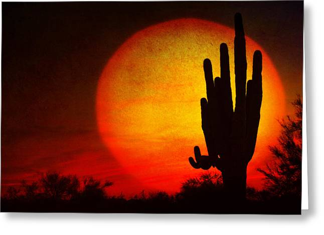Photo Galleries Greeting Cards - Big Saguaro Sunset Greeting Card by James BO  Insogna