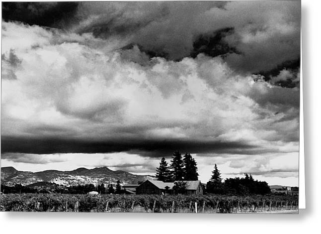 Nappa Valley Greeting Cards - Big Sky Greeting Card by Michael Kraus