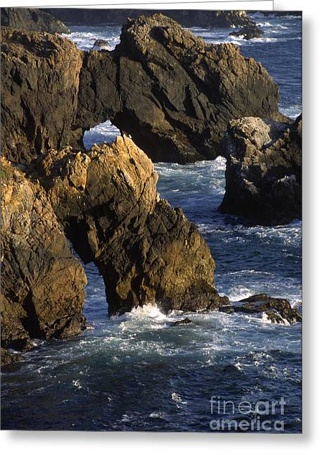 Vista Of Big Sur Greeting Cards - Big-sur-1b-2 Greeting Card by Craig Lovell