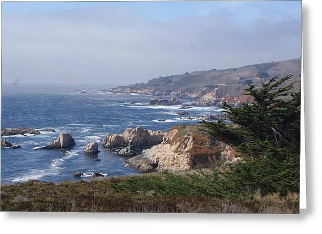 Pch Greeting Cards - Big Sur Greeting Card by David Connaughton