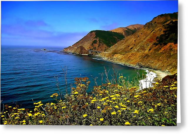 Big Sur Greeting Cards - Big Sur I Greeting Card by Ellen Heaverlo