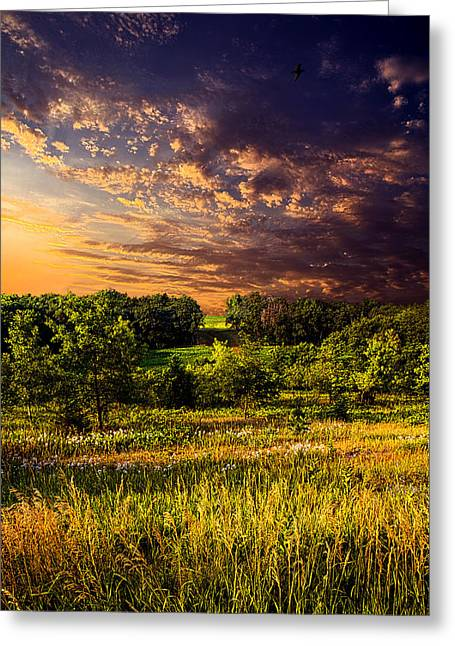 Geographic Greeting Cards - Big Valley Greeting Card by Phil Koch