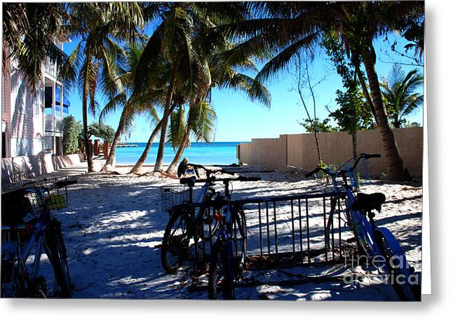 Florida House Greeting Cards - Bikes at Dogs Beach in Key West Greeting Card by Susanne Van Hulst