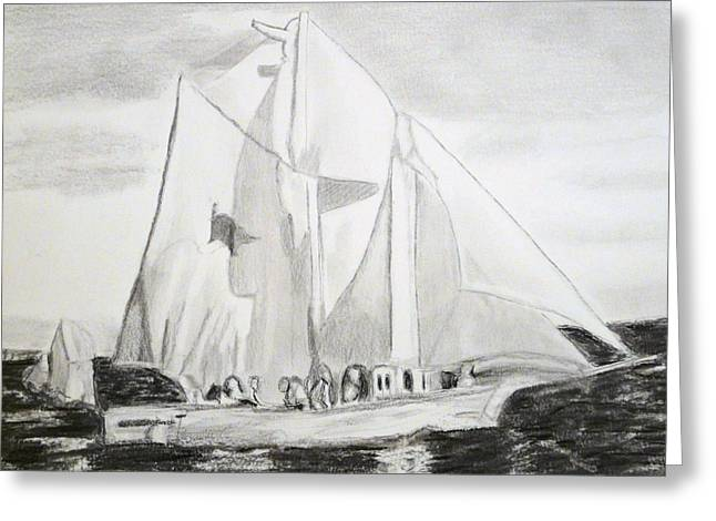 Wooden Ship Drawings Greeting Cards - Biloxi Schooner Greeting Card by Cathy Jourdan
