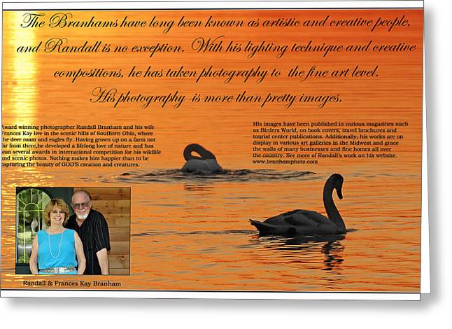 Swans At Dawn Greeting Cards - Bio Of Branham Greeting Card by Randall Branham
