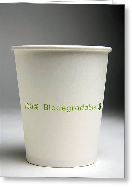 Take-out Greeting Cards - Biodegradable Cup Greeting Card by Victor De Schwanberg