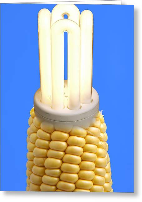 Electrical Device Greeting Cards - Biofuel Light Bulb, Comcept Greeting Card by Victor De Schwanberg