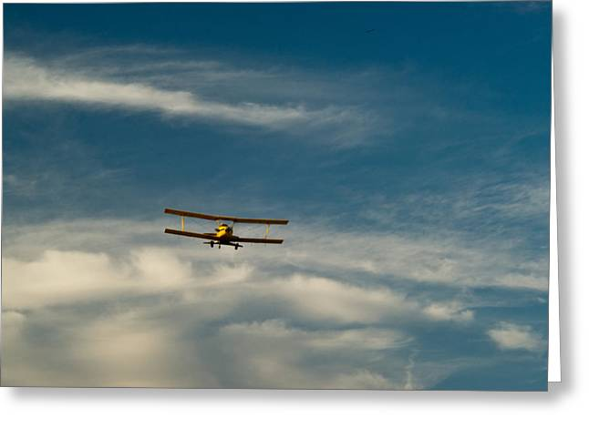 Crop Dusters Greeting Cards - Biplane in the Sky 2 Greeting Card by Douglas Barnett