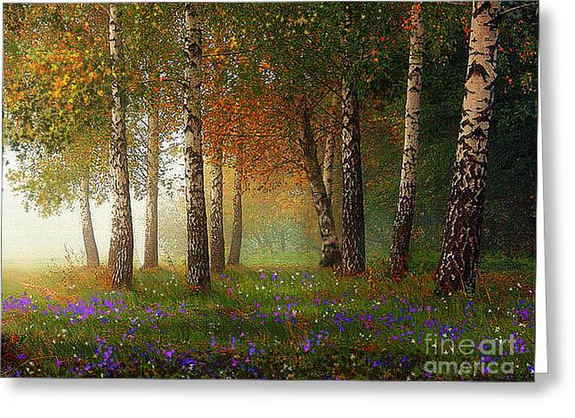 Birch Tree Greeting Cards - Birch Meadow Greeting Card by Robert Foster