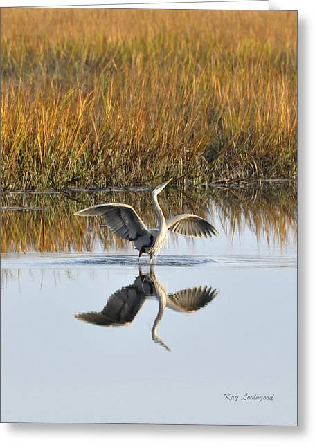 Kay Lovingood Greeting Cards - Bird Dance Greeting Card by Kay Lovingood