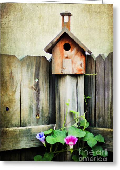 Vineyard Art Greeting Cards - Bird Haven Greeting Card by Darren Fisher