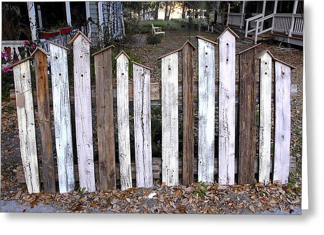Old Fence Posts Greeting Cards - Bird House Fence with Black Cat Greeting Card by David Lee Thompson
