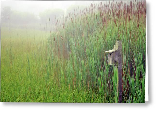Fog Mist Greeting Cards - Bird House in Quogue Wildlife Preserve Greeting Card by Rick Berk