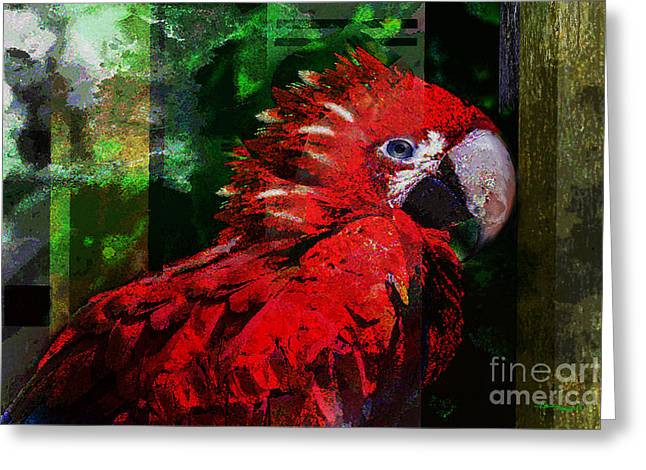Bird of Exotic Color Greeting Card by Christine Mayfield