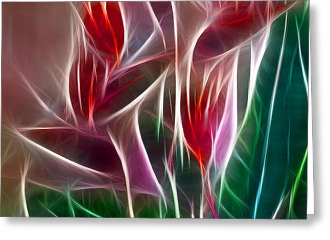 Polyptych Greeting Cards - Bird of Paradise Fractal Panel 2 Greeting Card by Peter Piatt
