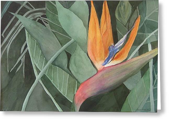 Heidi Patricio-nadon Greeting Cards - Bird of Paradise Greeting Card by Heidi Patricio-Nadon