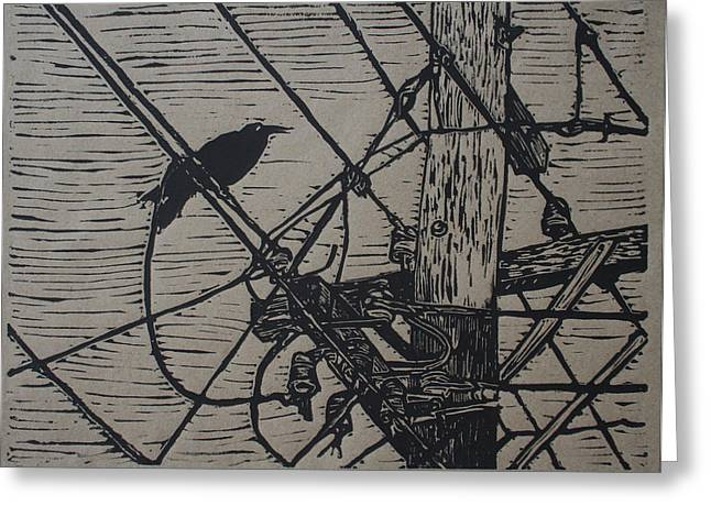 Lino Drawings Greeting Cards - Bird on a Wire Greeting Card by William Cauthern