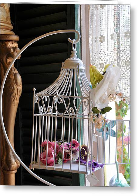 Interior Still Life Greeting Cards - Birdcage And Flowers Greeting Card by Jan Amiss Photography