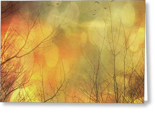Birds in flight at sunset Greeting Card by Sandra Cunningham