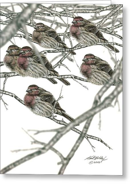 Holdorf Greeting Cards - Birds in Winter Greeting Card by Kurt Holdorf
