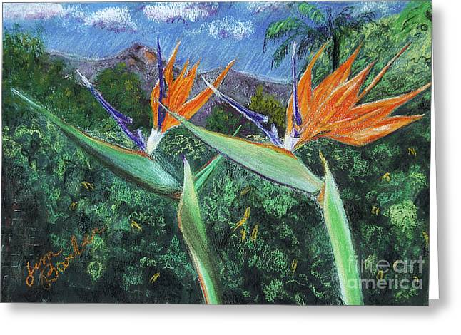 Chest Pastels Greeting Cards - Birds of Paradise Greeting Card by Jim Barber Hove